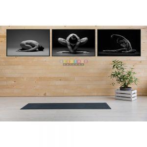 Combo 3 bức canvas yoga nude mã YN01