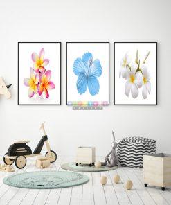 Tranh canvas hoa khoe sắt mã HS06